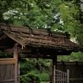 Photos: '18_06_28 M3_kouzenji-024 (2)