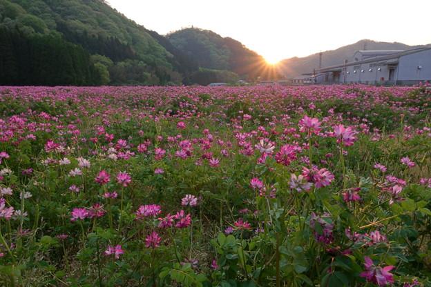 Photos: 夕陽の沈むころ