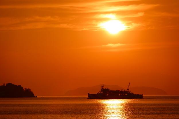 夕陽の「しらきさん」