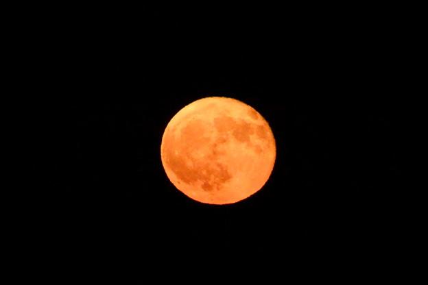 月齢15.7の赤い月