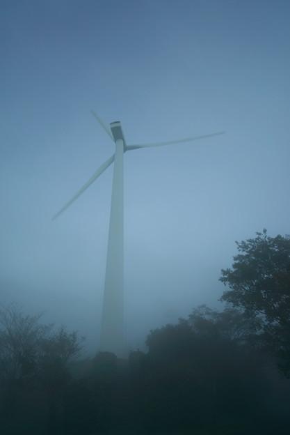 霧にかすんで