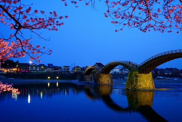 夜桜 錦帯橋
