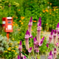 Photos: 花園ポスト