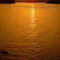 Photos: 輝く海