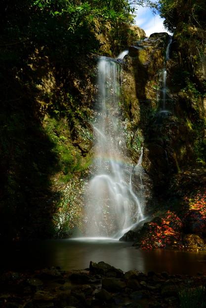 Photos: 岩尾の滝
