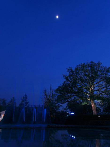 月夜の噴水