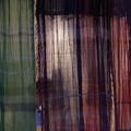 Photos: 店先に掛るカーテン
