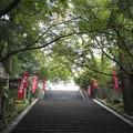 Photos: 法輪寺(嵐山)
