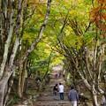 Photos: 鶏足寺