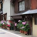 Photos: 伊根町(2)