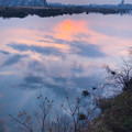 Photos: 淀川の夕陽