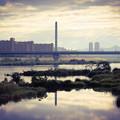 淀川の一風景