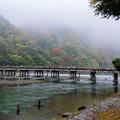 雨の渡月橋