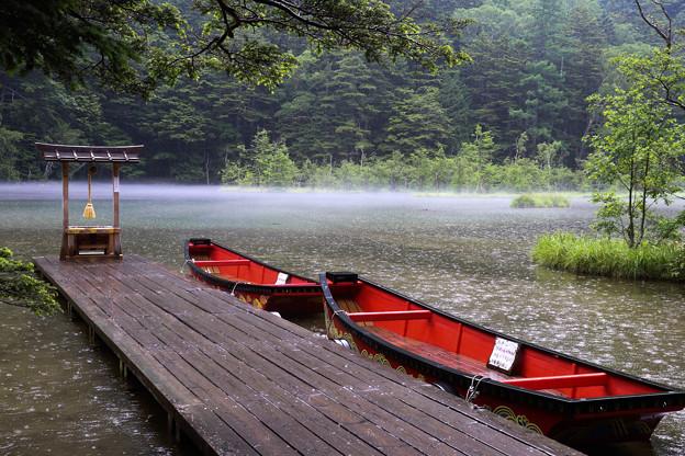 雨の明神池(上高地)