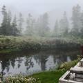 Photos: 栂池自然園