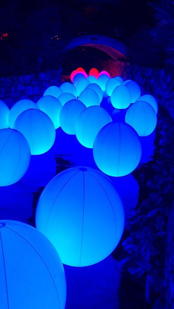 光の祭 (B)