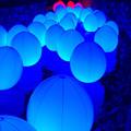 Photos: 光の祭 (B)