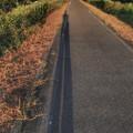 Photos: 私の長~い足