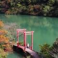 Photos: 秋を楽しむ