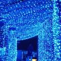 Photos: Blue Tunnel