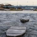 鴨川に浮かぶ?石舟