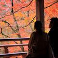 Photos: 紅葉を二人占め