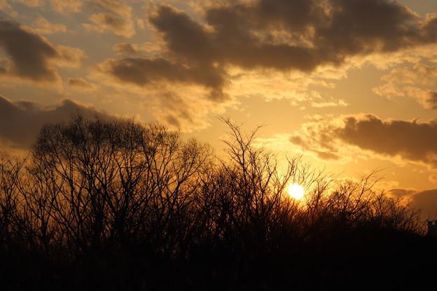 淀川に陽が沈む頃