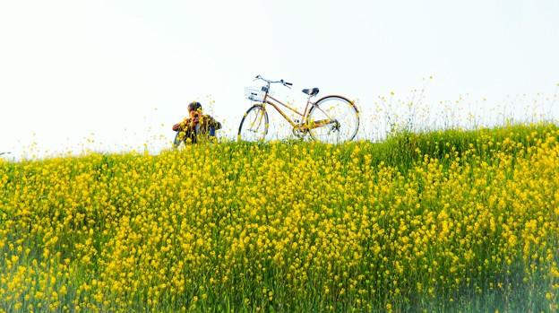 春を独り占め