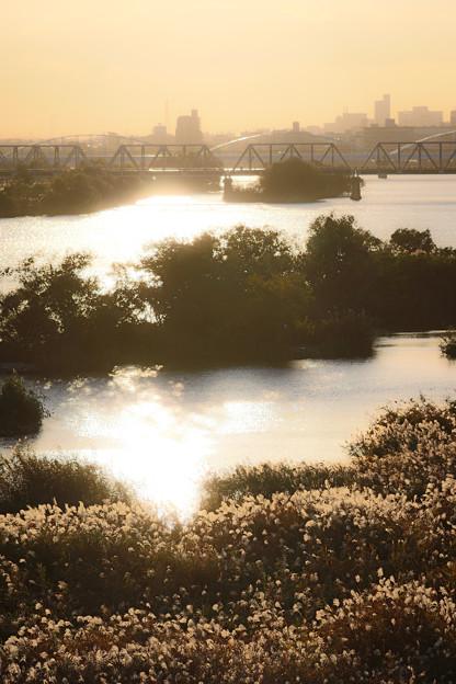 淀川の風景