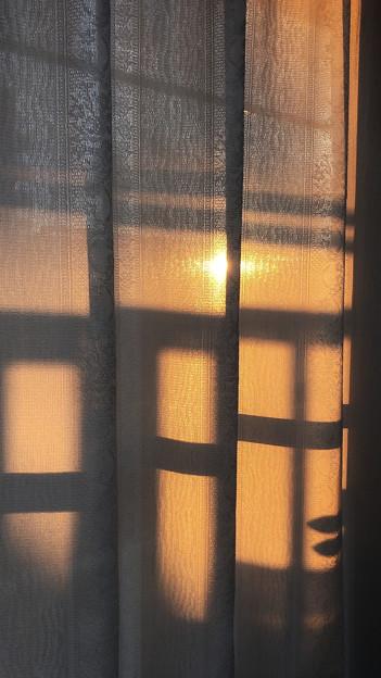 カーテン越しの夕陽
