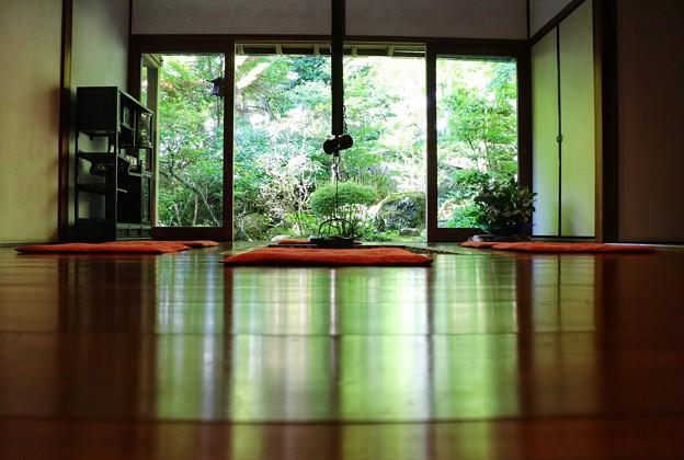 京都大原 宝泉院にて