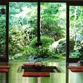 Photos: 京都大原 宝泉院(2)