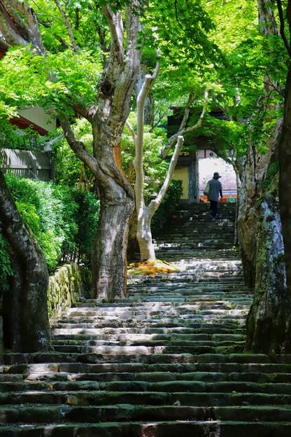 京都大原 寂光院