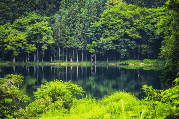 静かなる湖畔