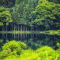 Photos: 静かなる湖畔