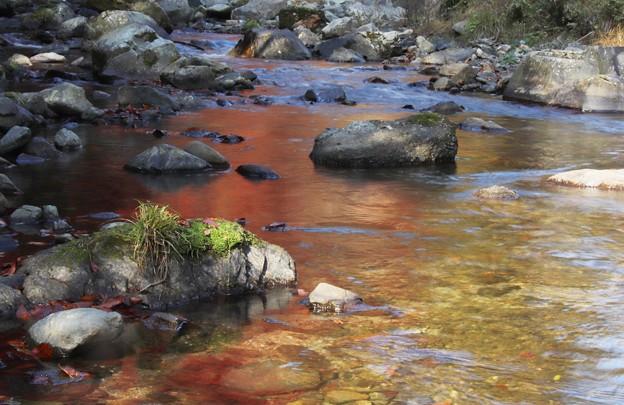 秋に染まる川面
