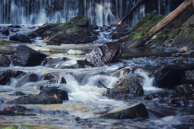 秋の貴船川