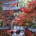 Photos: 鞍馬寺の紅葉
