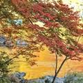 川面の紅葉