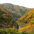 Photos: 秋の嵐山