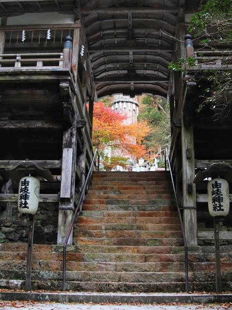 階段の先には紅葉が
