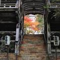 Photos: 階段の先には紅葉が