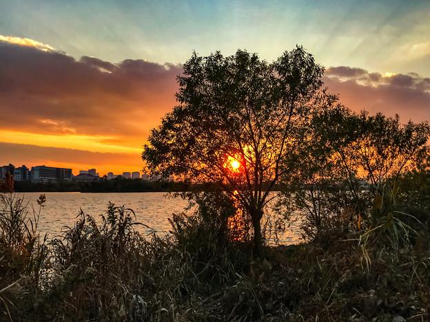 夕暮れの淀川