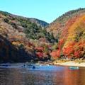 Photos: 行楽の嵐山