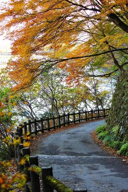 嵐山散策路