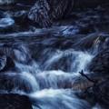 Photos: 白き渓流
