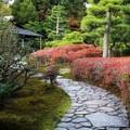 Photos: 京都 二条城庭園