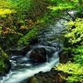 Photos: 初秋の渓流
