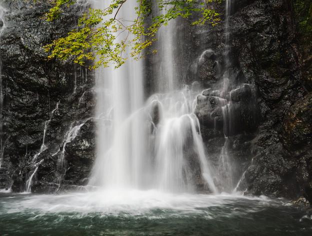 滝壺(箕面大滝)
