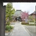 Photos: DSC_7445 祥泉寺・・・1